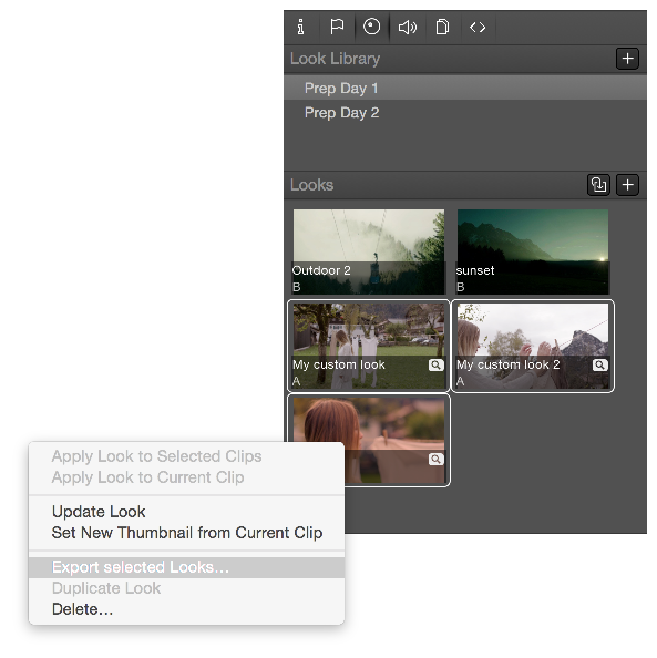 Exporting Looks from Silverstack | Pomfort Knowledge Base