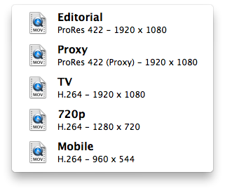 Transcoding presets