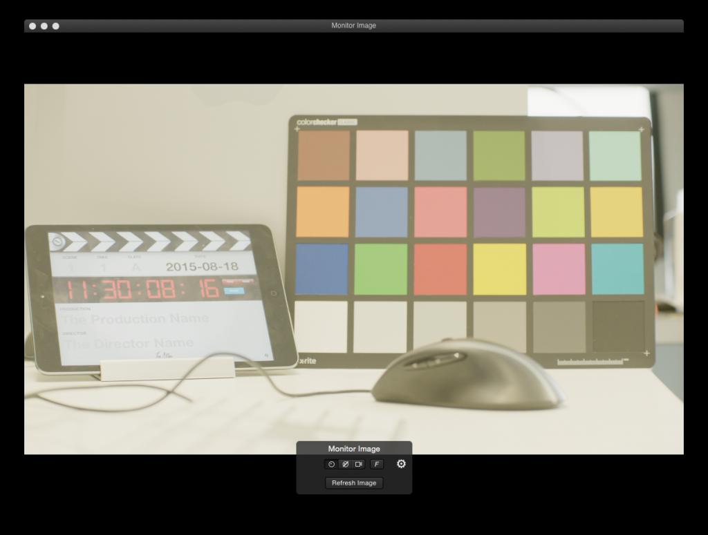figure 5: the FSI DM250 monitor's live image