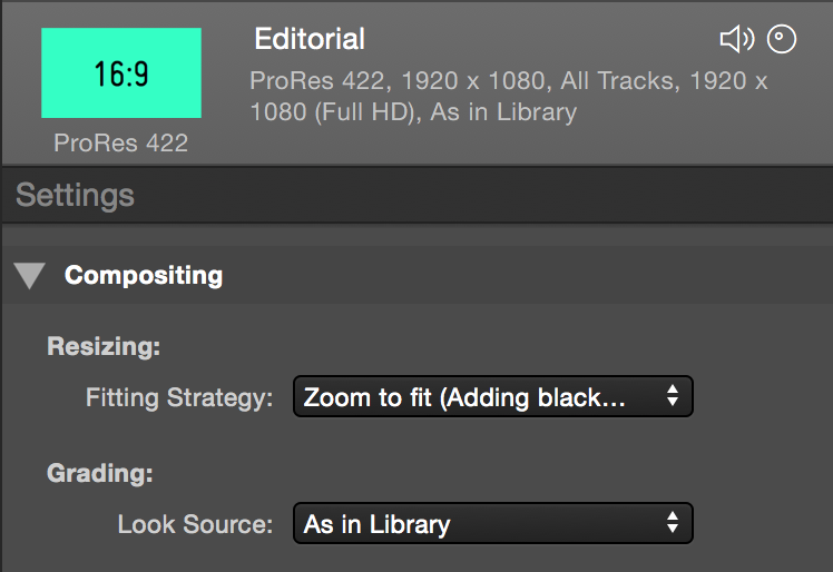figure 5: Choose the look settings for transcoding