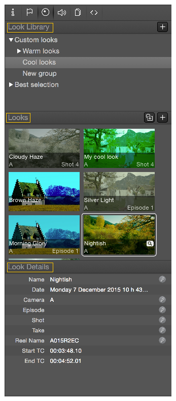 Figure 1: The Silverstack look tab containing the Look Library
