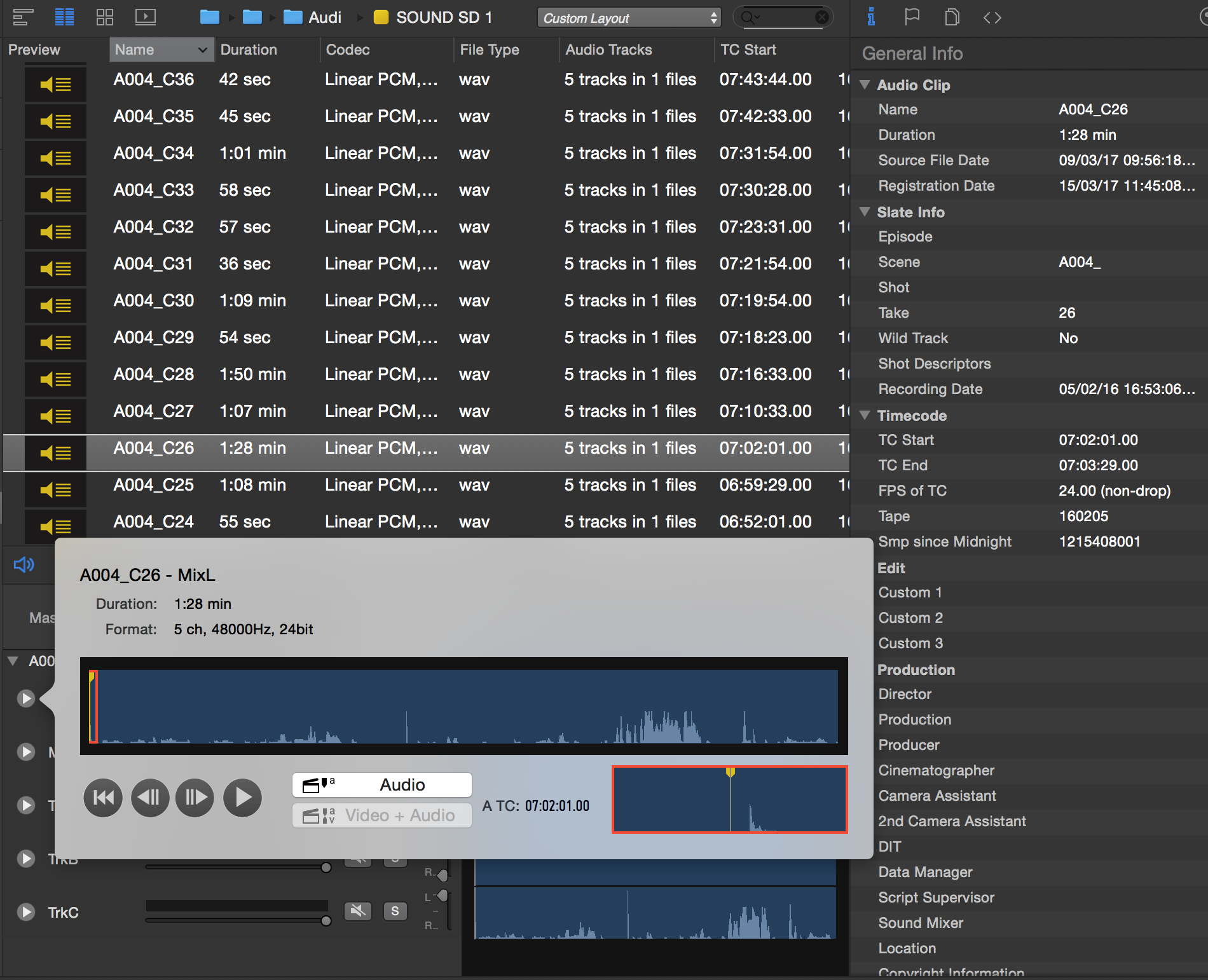 Fig. 3: The audio tracks panel with single audio track playback