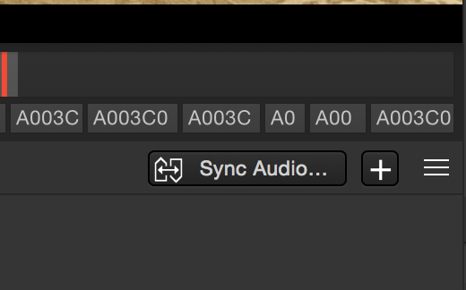 "Fig. 4: The ""Sync Audio"" button"