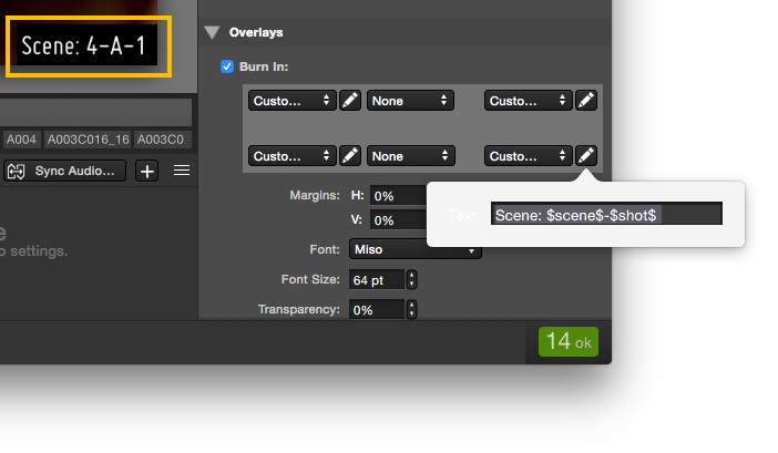 Fig.1: Custom text setting in the burn in settings of transcoding configurations