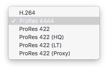 Fig. 2: Available transcoding options